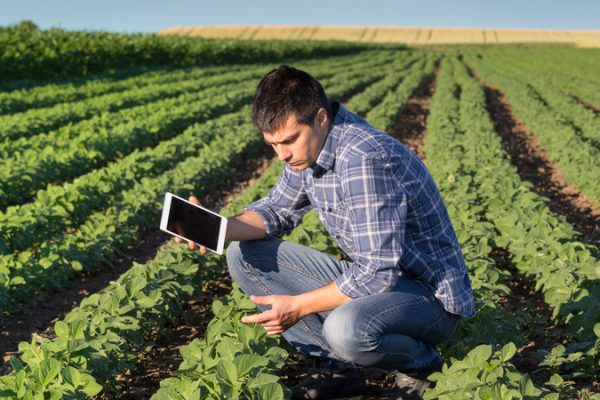 Crop Agronomy